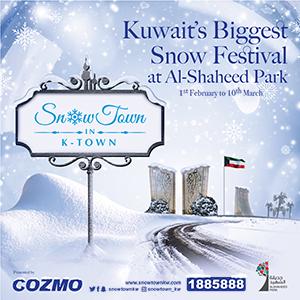 snowtownkw.com